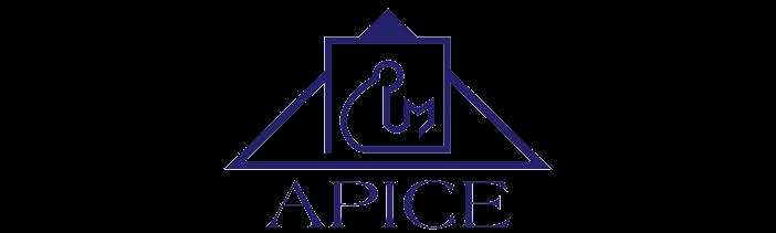 Logo_APICE_3